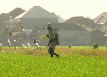 Potongan gambar film dokumenter Petani Terakhir karya Sutradara Dwitra J. Ariana