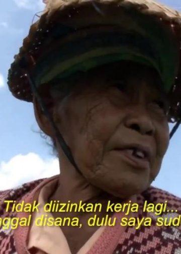 Potongan gambar dalam film documenter Petani Terakhir karya Dwitra J Ariana