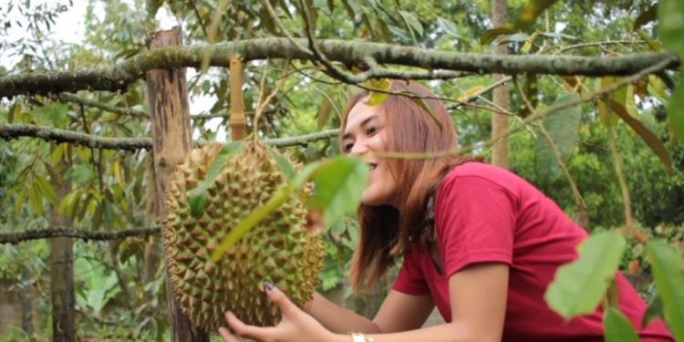 Festival Makan Duren digelar di Tajun, Buleleng