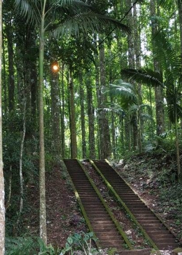 Tangga menuju Pura Pucak Bukit Sangkur