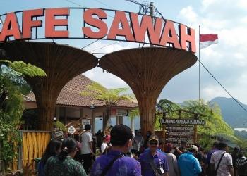 Kafe Sawah dikelola Bumdes di Desa Pujonkidul, Malang